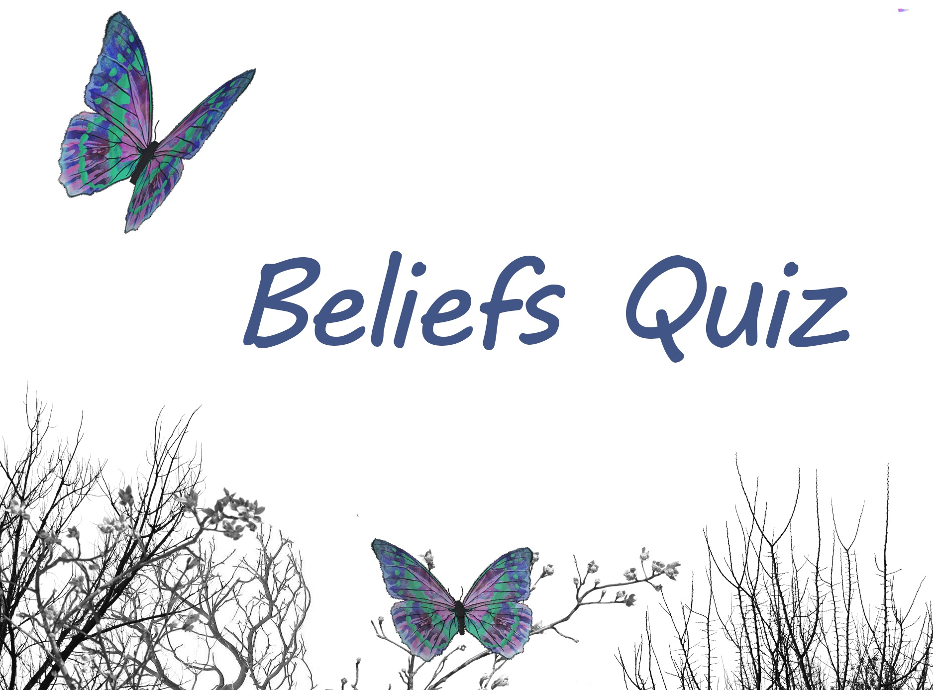 The Beliefs Quiz
